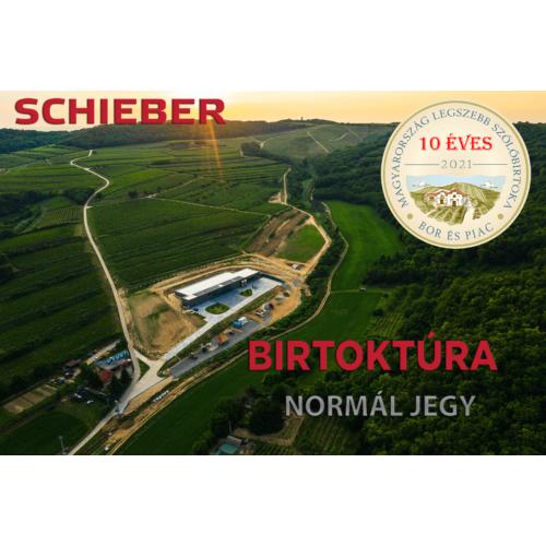 Birtoktúra normál jegy